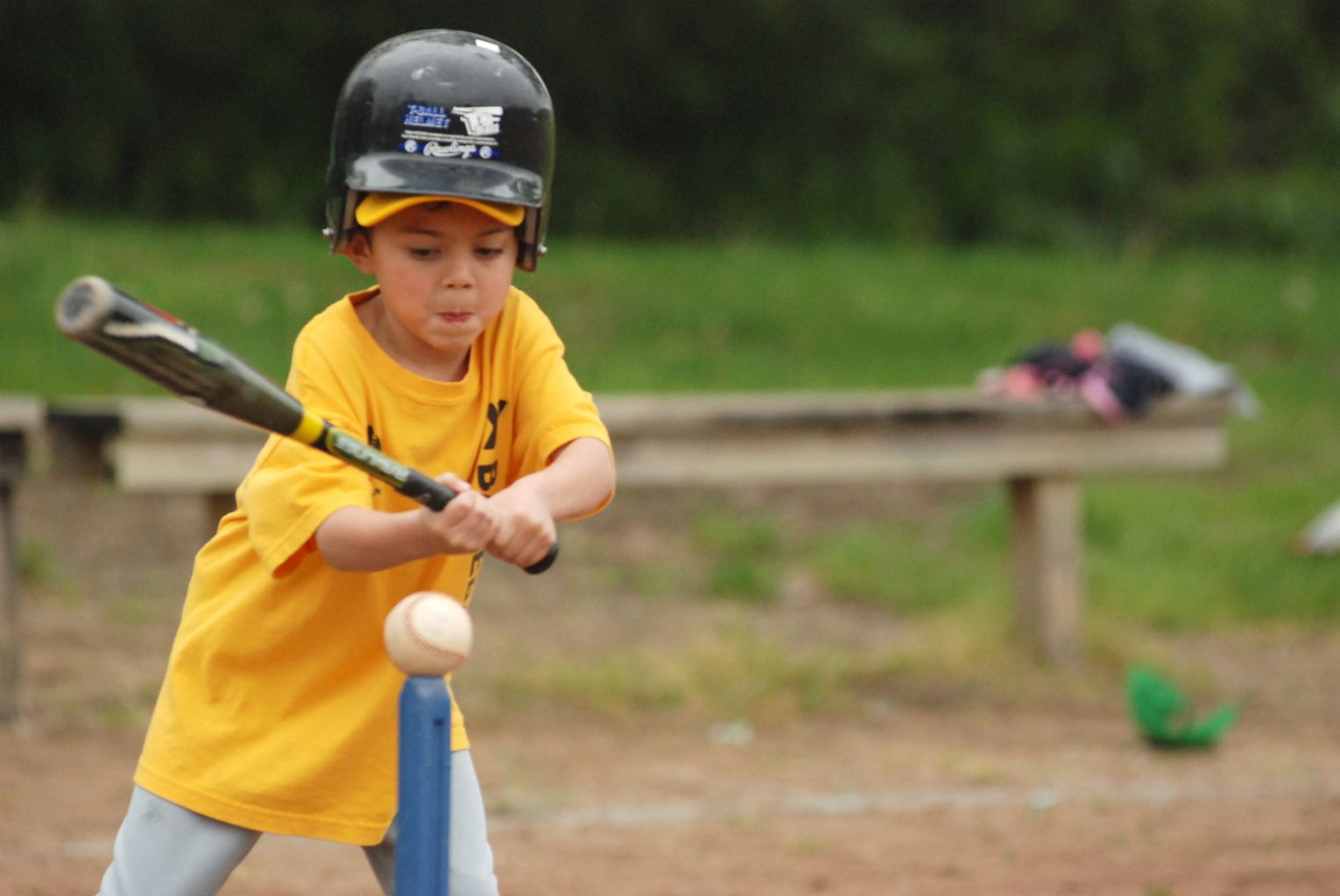 Sports Leagues Youth Baseball